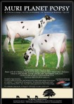 Mury Planet Popsy VG-87-IT 2yr