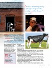 Holstein Journal August '14 - Page 2