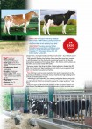 Holstein Journal August '14 - Page 6