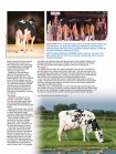 Holstein Journal August '14 - Page 4