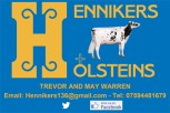 Guston / Hennikers Holsteins