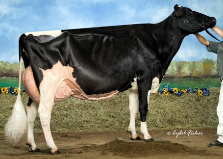 Rainyride Talent Barbara EX-95 EEEEE