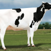 Al-Lew Monterey Ashley 1346 VG-89-USA EX-MS La1.